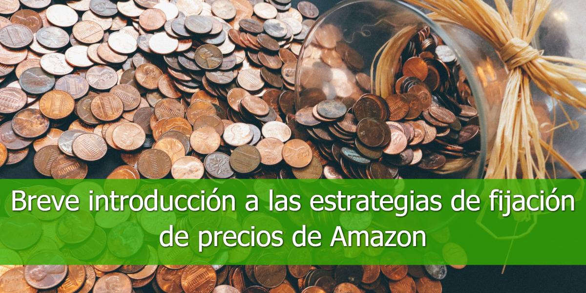 Breve introducción a las estrategias de fijación de precios de Amazon