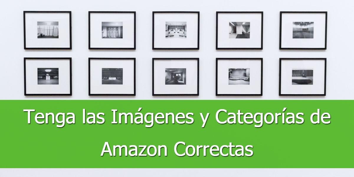 Establezca las Imágenes y Categorías de Amazon Correctas